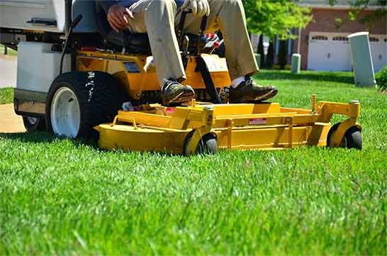 lawn mowing services in Garland, Mesquite, Dallas, Richardson, Plano